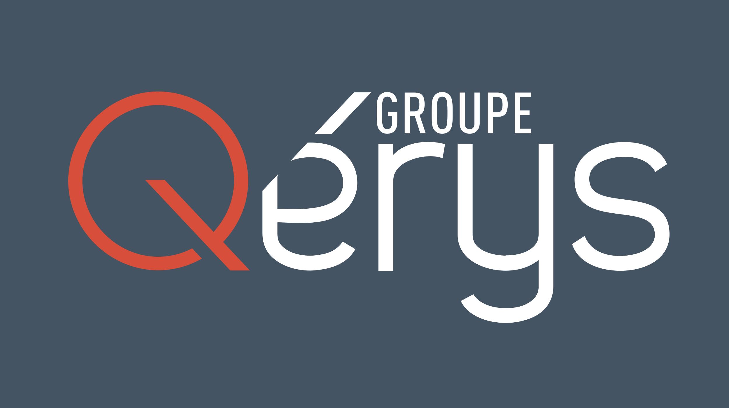 Identité visuelle : Logo Qérys